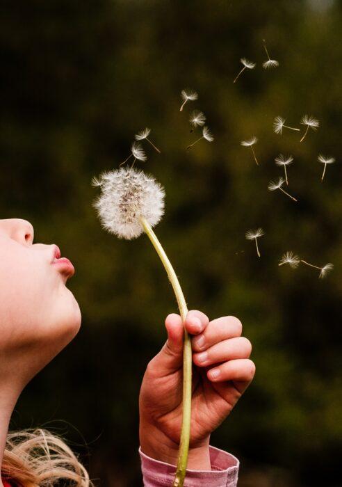 Benevolência: As sementes lançadas nos outros germinarão em nós