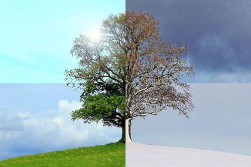 O incomodo que promove mudanças