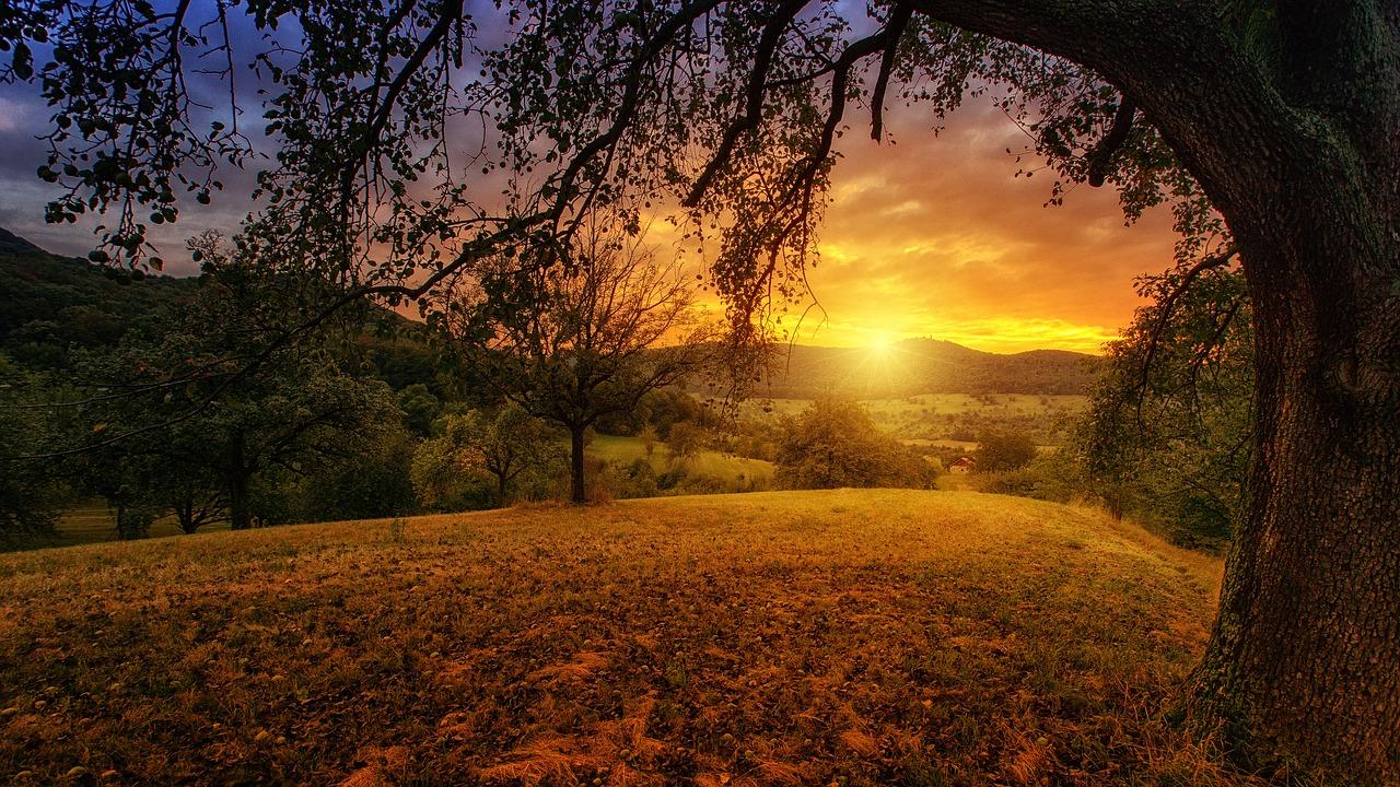 Conheça o atendimento com Evangelhoterapia da Nova Era